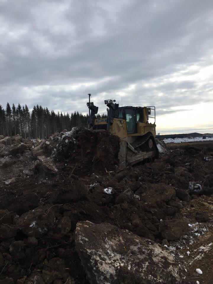 Bladning vegetation i ELP-Norra